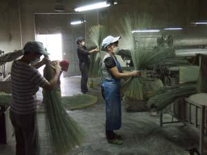 丁寧に行われている製織時のい草の選別