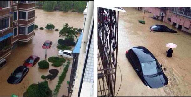 強い台風23号が7日未明、中国福建省に上陸しました。 寧波への被害は大きく、畳表工場の80%が20~80cm程度浸水する という甚大な被害を受けています。
